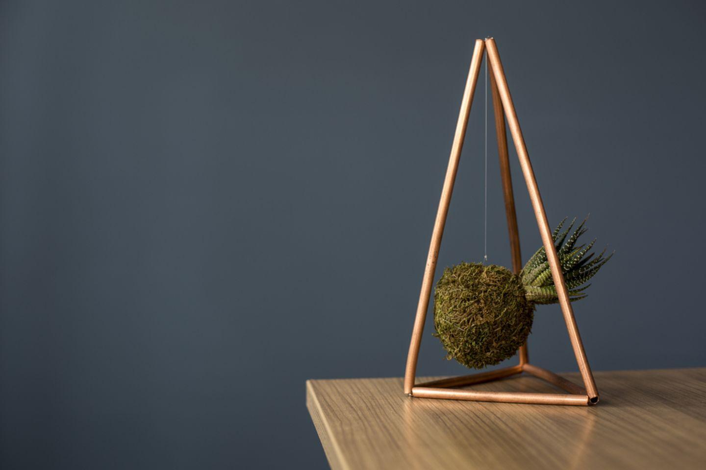 Kokedama: Deko-Ideen und Tipps zum Selbermachen: Moosball aufgehängt in Vase