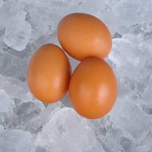 Eier einfrieren: So gelingt es: Drei Eier liegen auf einer Schicht aus Eiswürfeln