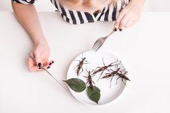 Insekten essen: Heuschrecken auf einem Teller