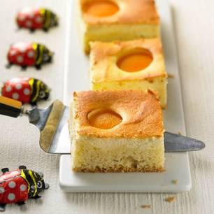 Kuchenbasar: Aprikosen-Käsekuchen