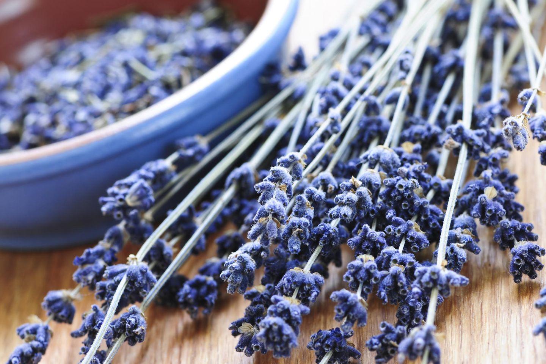 Lavendel trocknen und weiterverarbeiten: Lavendelstiele neben einer Schale