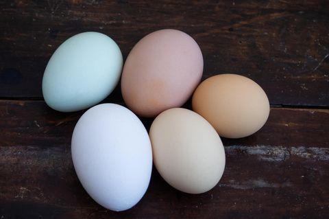 Warenkunde: Alles über Eier