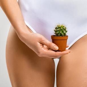 Haarentfernung im Intimbereich: Frau hält Kaktus vor den Intimbereich