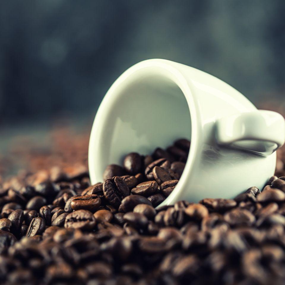 Mahlgrad für Kaffee: Weiße Tasse liegt auf einem Haufen aus Kaffeebohnen