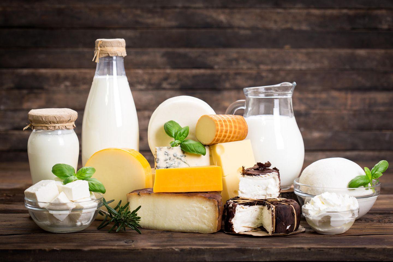 Milchprodukte: Viele Milchprodukte zusammen