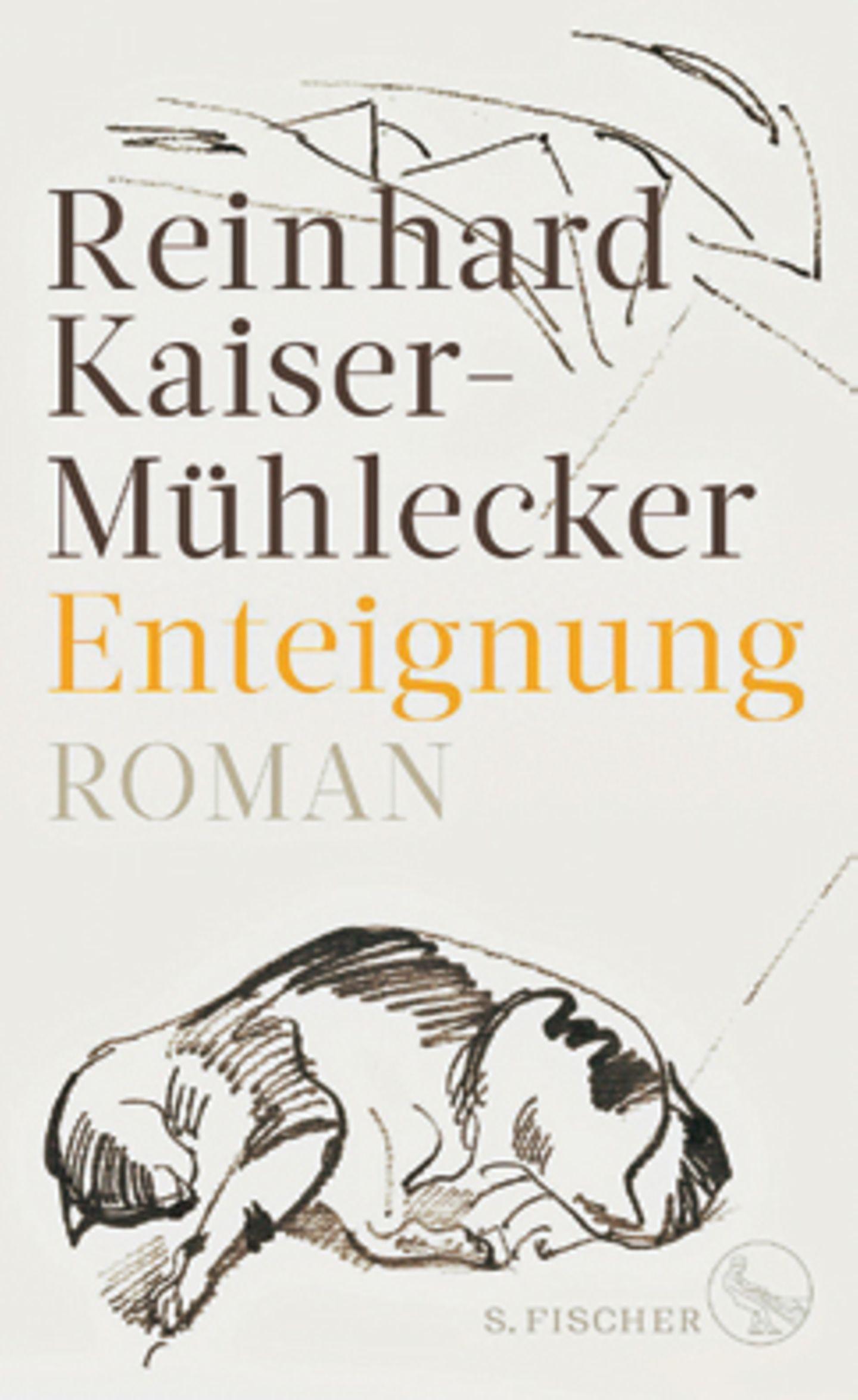 """Bücher für den Urlaub: Buchcover """"Enteignung"""""""