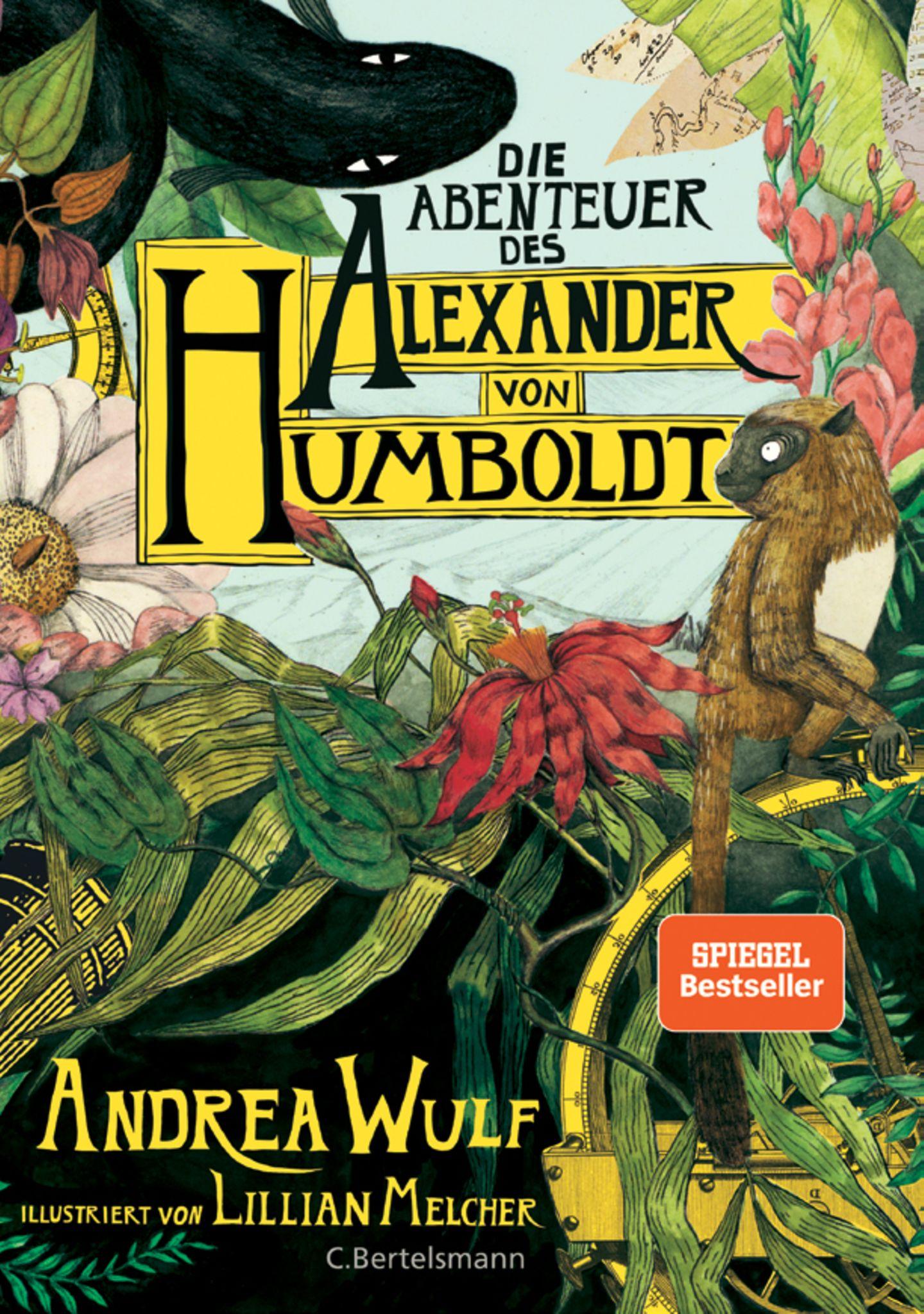 """Bücher für den Urlaub: Buchcover """"Die Abenteuer des Alexander von Humboldt"""""""