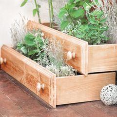 Gartendeko selber machen: Zwei Holzschubladen auf dem Boden stehend, in denen Pflanzen stehen