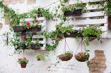 Gartendeko selber machen: Weißgestrichene Paletten an der Wand angebracht und mit Pflanzen bestückt