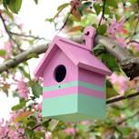 Vogelhaus selber bauen: So geht es Schritt für Schritt: Buntes Vogelhaus am Baum