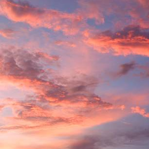 Rosa Wolken füllen die sozialen Netzwerke