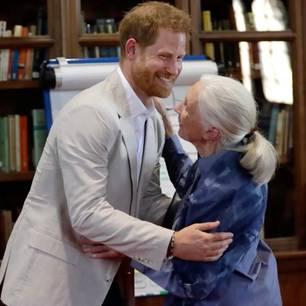 Prinz Harry: So lustig begrüßt er diese legendäre Primatenforscherin!