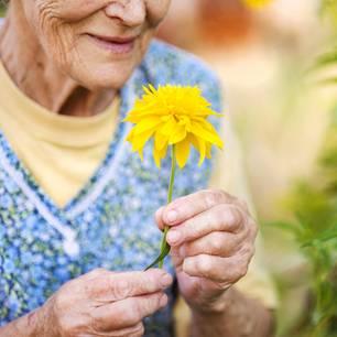 Lebensweisheiten von Hundertjährigen: Eine Hundertjährige mit einer gelben Blume in der Hand