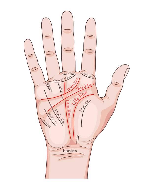 Handlesen: Die Abbildung einer Hand mit den unterschiedlichen Handlinien