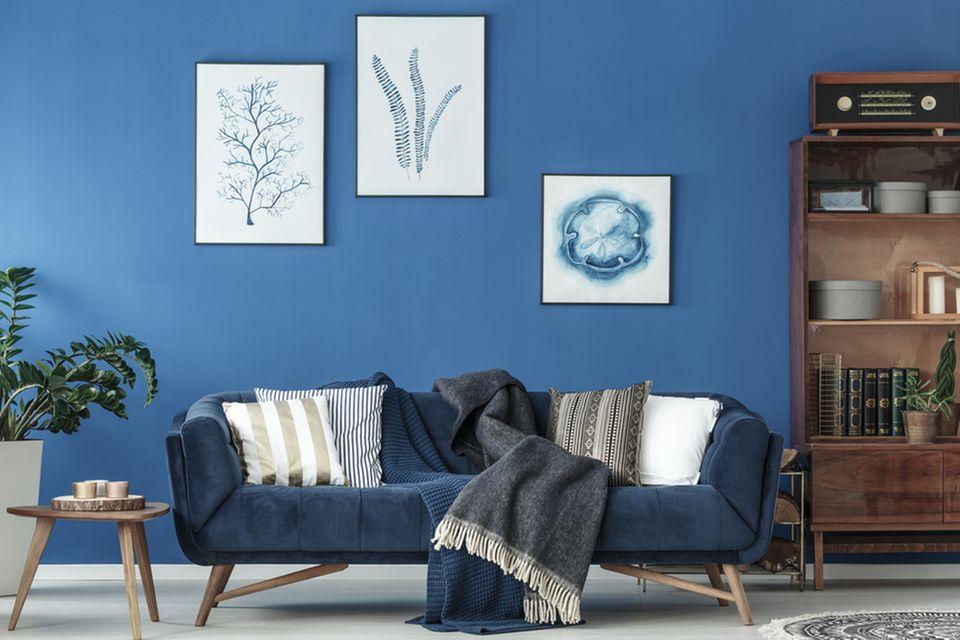 Feng Shui im Wohnzimmer: Blaues Sofa steht an einer blauen Wand mit Bildern. Daneben ein Bücherregal und ein Beistelltisch