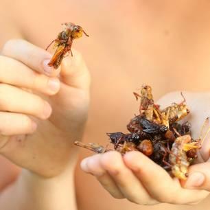 Insekten essen und die Umwelt schonen: Frau mit einer Hand voll Insekten