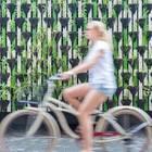 Gärtnern in der Stadt - die besten Tipps: Frau auf Fahrrad vor Pflanzenwand