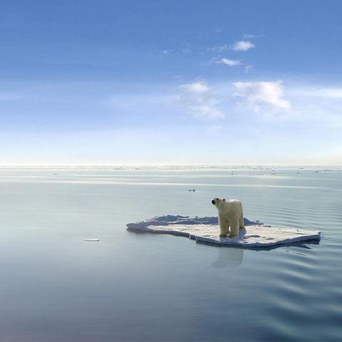 Umwelt: Ist der Klimawandel nur eine Lüge? Schön wär's ...