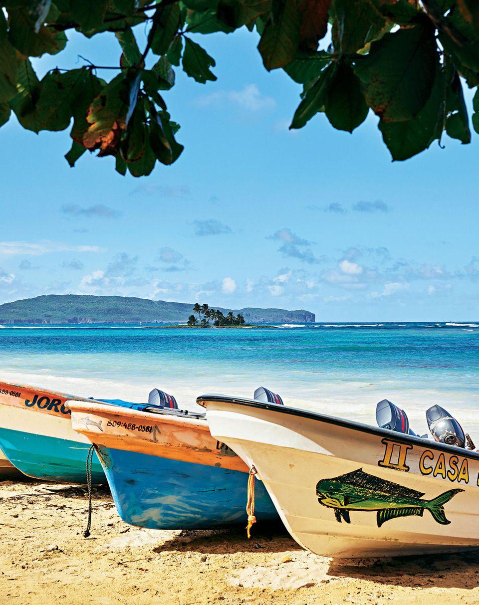 Dominikanische Republik: Foto vom Strand von Las Galeras