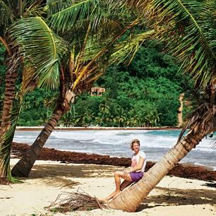 Dominikanische Republik: Redakteurin sitzt auf Palme am Strand