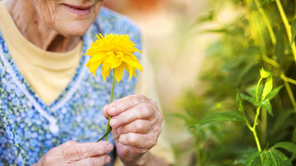 107-Jährige Frau: Alte Frau hält Blume