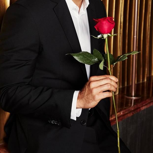 Promi-News: Der Bachelor - ist ER der neue Rosenkavalier?