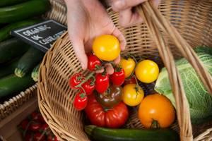 Regional oder bio - was ist besser?: Frau mit Gemüsekorb