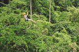Chiang Mai - die besten Insidertipps: Dschungel