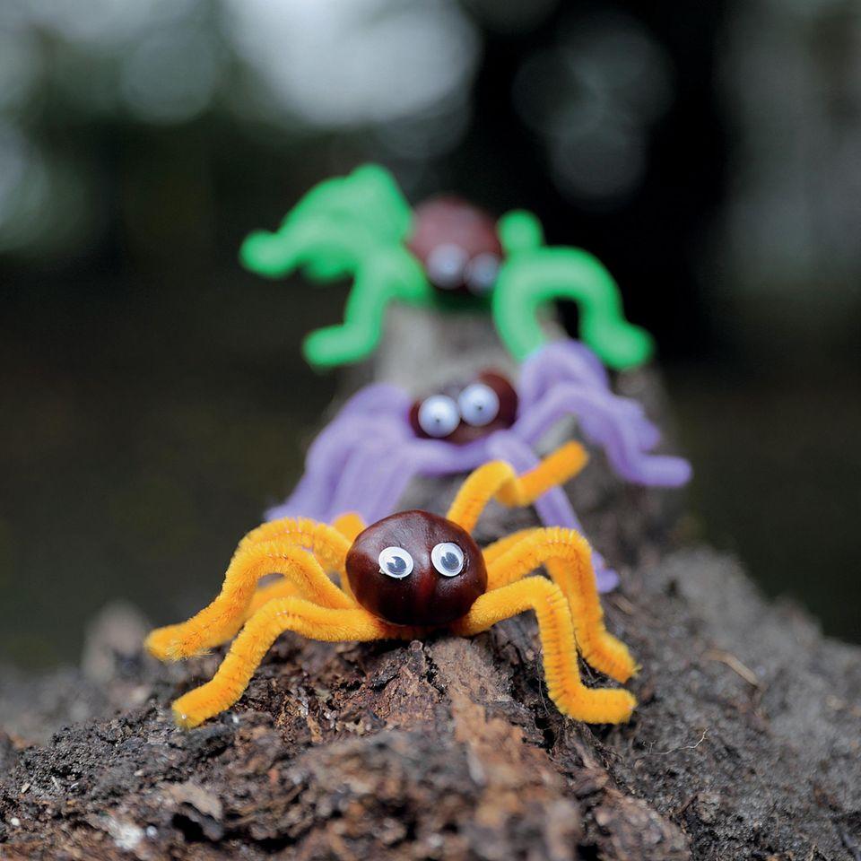 Halloween DIY für Kinder - 4 Anleitungen: Kastanienspinnen