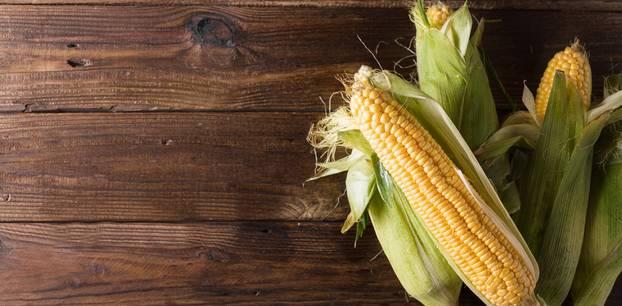 Mais gesund: Maiskolben auf einem Tisch