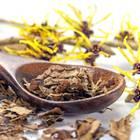 Hamamelis: Löffel mit getrockneten Zaubernuss-Blättern