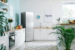 Wohnküche Ideen: Helle Küche mit Teppich und Pflanzen