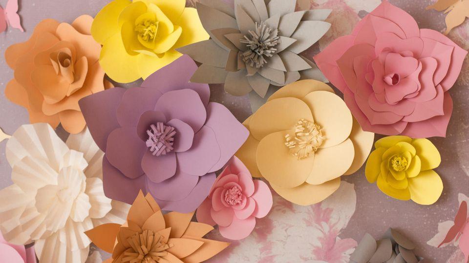 Basteln mit Papier: Papierblumen in verschiedenen Farben