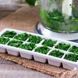 Kräuter einfrieren: Kräuter in Eiswürfelbehälter