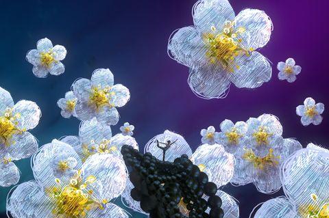 Traumdeutung: Frau träumt von Blumen