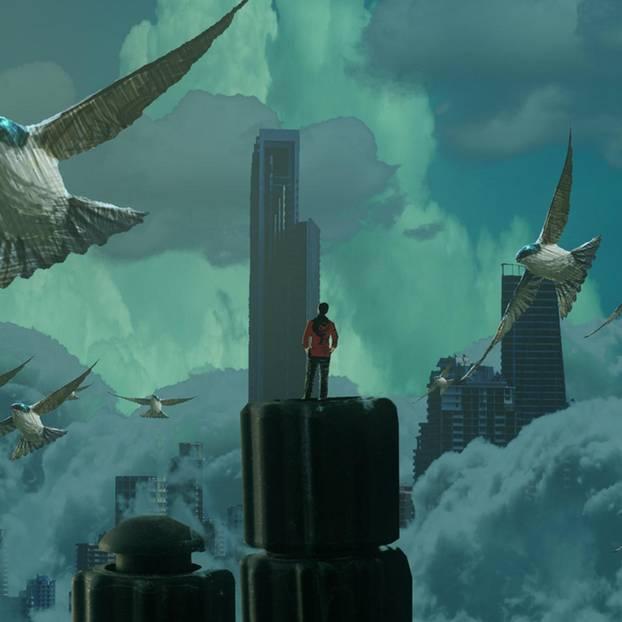 Traumdeutung: Frau träumt von Vögel