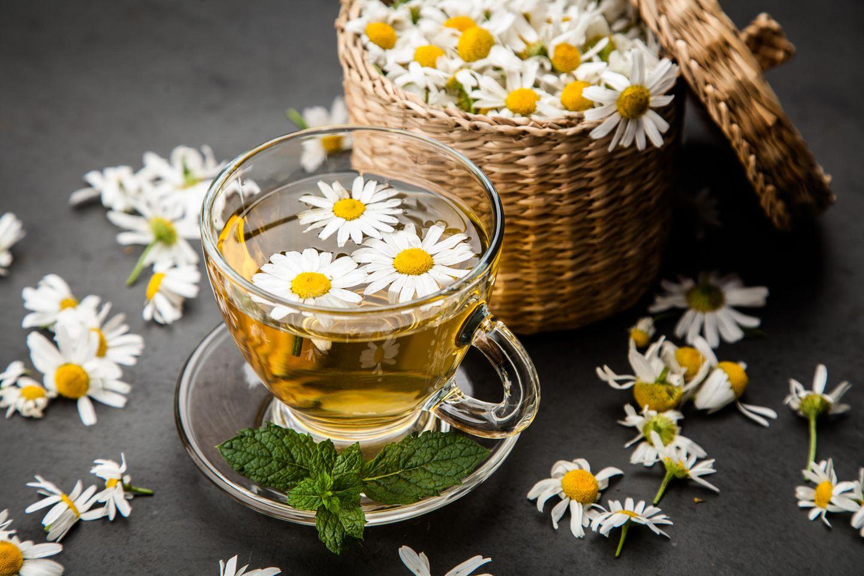 Kamillentee Wirkung: Kamillenblüten im Tee