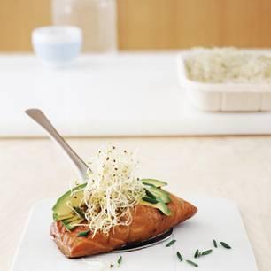 Teriyaki-Lachs mit Avocado und Sprossen