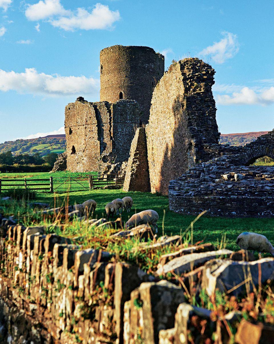 Lange Geschichte: Malerische Ruinen wie hier in Tretower Court gehören zu Wales wie die Schafe