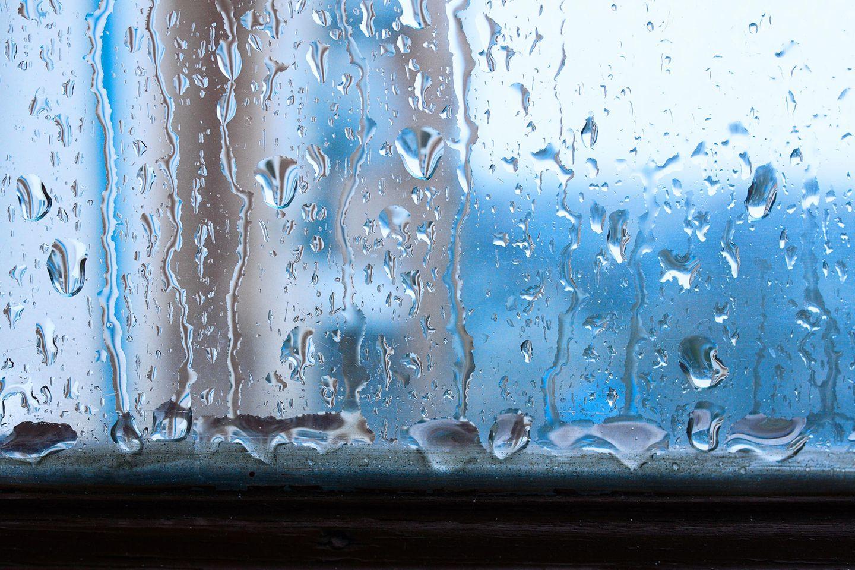 Luftfeuchtigkeit Senken Die Besten Tipps Brigitte De