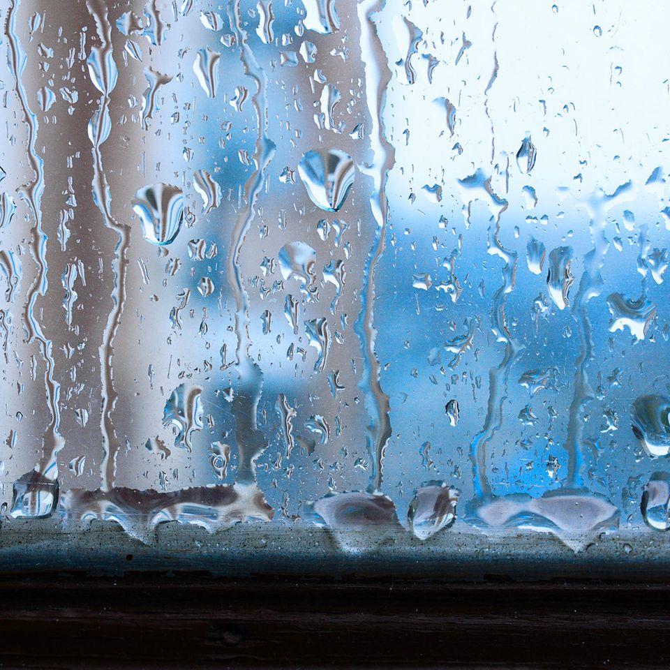 Luftfeuchtigkeit senken: Wassertropfen im Fensterrahmen