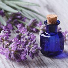 Hausmittel: Lavendel
