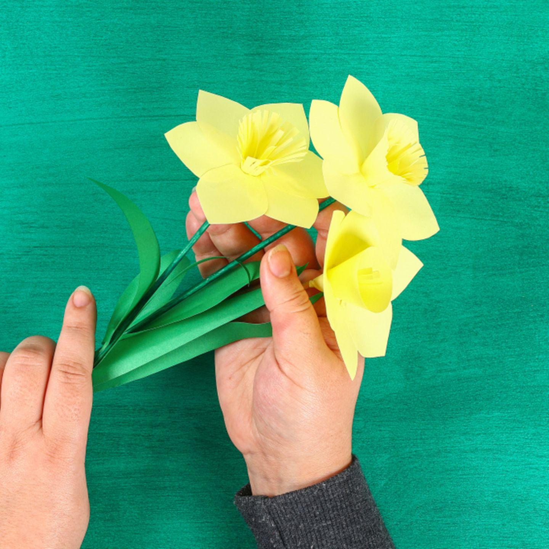 Blumen basteln: Narzissen aus Papier