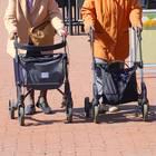 Ewige Freunschaft: Frauen mit Gehwagen