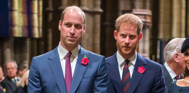 William und Harry: Zusammenleben unmöglich