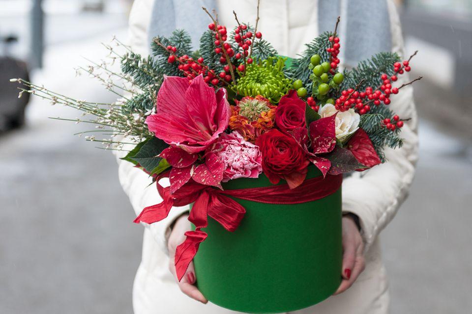 Amaryllis-Pflege: Frau hält Gesteck mit Blumen in den Händen