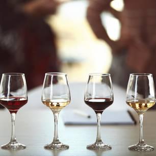 Wein-Guide: Welche Rebsorte passt wozu?