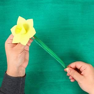 Blumen basteln: Narzisse aus Papier