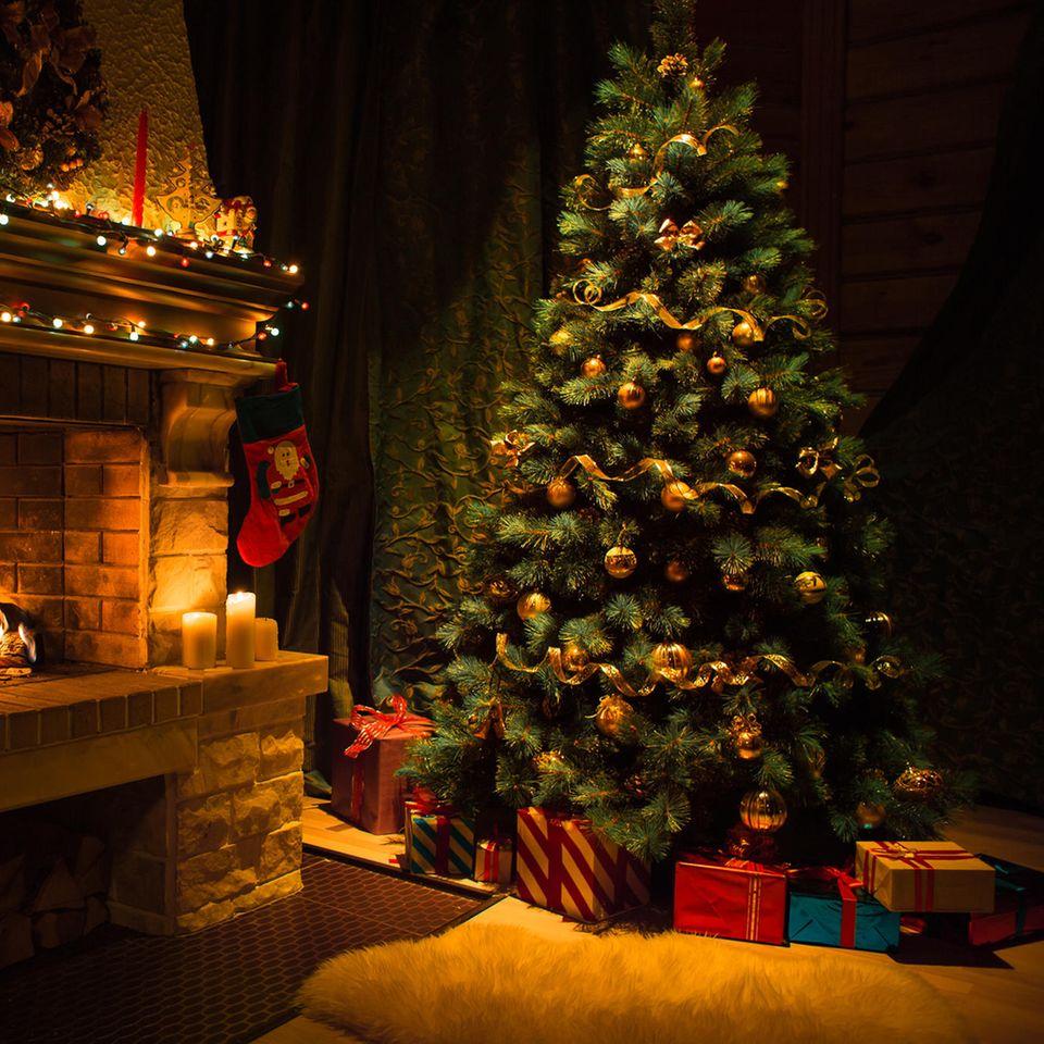 Familie stellt Weihnachtsbaum auf – plötzlich schauen sie zwei Augen an!