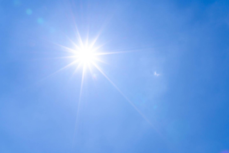 19 Grad im Januar! Wetter-Phänomen macht Experten große Sorgen